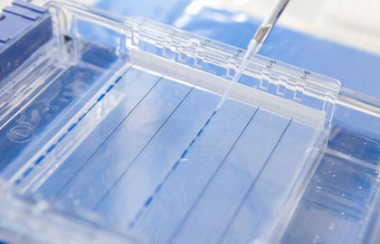 Life Science Instruments and Consumables Report Category