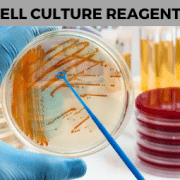 cell culture reagents